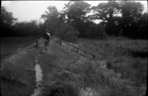 Walk on the dyke Copyright ⓒ 2008 Cate McRae; All Rights Reserved reserved